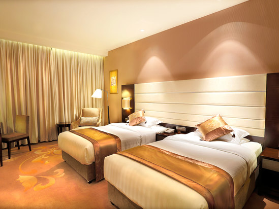 Deluxe Special Twin Room