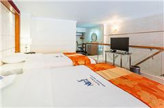 Multi-level Business Suite Twin Room