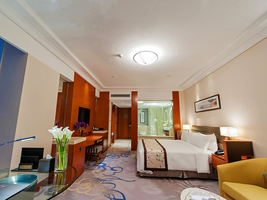 Executive Queen Room B