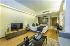 豪华大床公寓