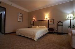 Business Deluxe Queen Room