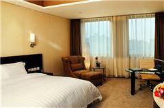 Special Promotion Business Room