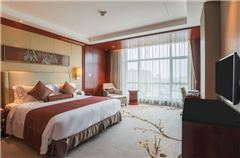 Executive City-view Queen Room
