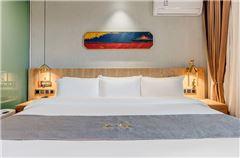 一臥一廳浴缸大床房