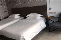 南樓普通雙床房