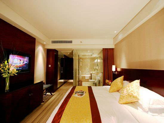 Fresh Executive Room