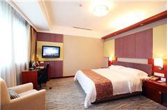 Elegant Standard Suite