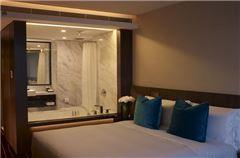 VIP City-view Room