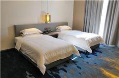 高级双床房