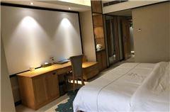 豪华3D观影大床房