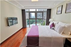 高级1房1厅大床房