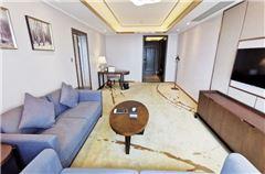 Deluxe Business 1 bedroom 1 living room Queen Room