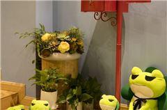 Frog Entity Room