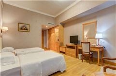 Superior Mountain-view Twin Room
