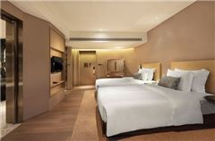 Classical Mountain-view Twin Room