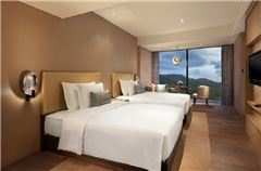 Deluxe Mountain-view Twin Room