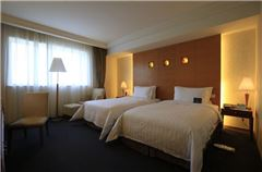 City-view Business Twin Room