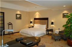 Villa B Superior Single Room