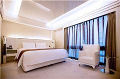 空气清新大床房