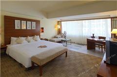 Deluxe Standard Queen Room