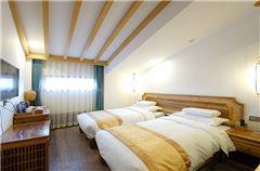 Elegant Twin Room