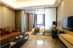 Executive 1-bedroom and 1-living room