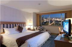 一室一厅商务大床房