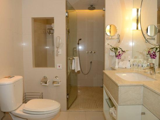 高级豪华大床房-浴室