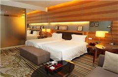 豪華養生蒸汽雙床房