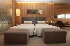 精英城景雙床房