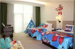 Super Wings Theme Room