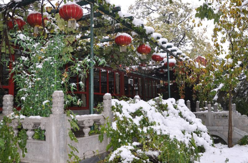 抚松斋餐厅冬景