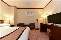 Special Queen Room