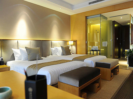 Specail Business Deluxe Twin Room