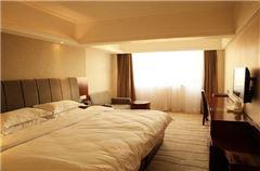 Warm Queen Room