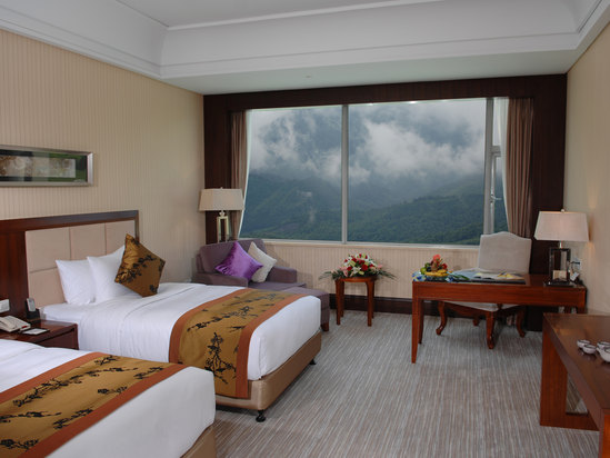 Executive Mountain-view Room