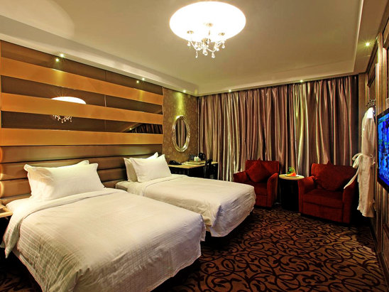 Deluxe Twin Room (limited offer)
