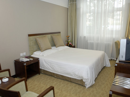 Yangyiyuan Deluxe Room in Affiliated Villa (no star)