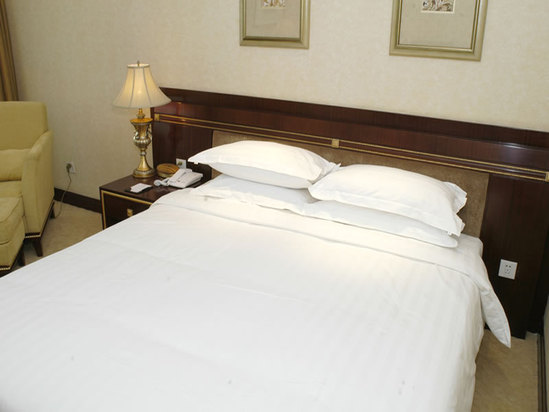 Executive Standard Room(limited offer)