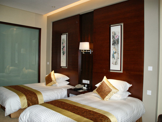 Deluxe Twin Room (special promotion)
