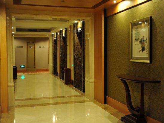 客房電梯廳