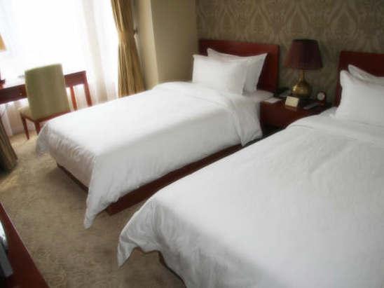 高级套房双床房