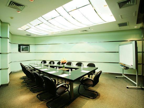 会议室(明苑B厅)