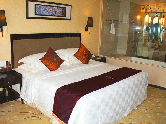 高级贵宾双床房