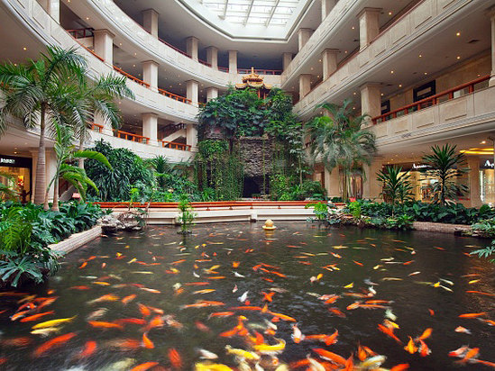 Crowne Plaza Hotel: Booking Crowne Plaza Hotel, China