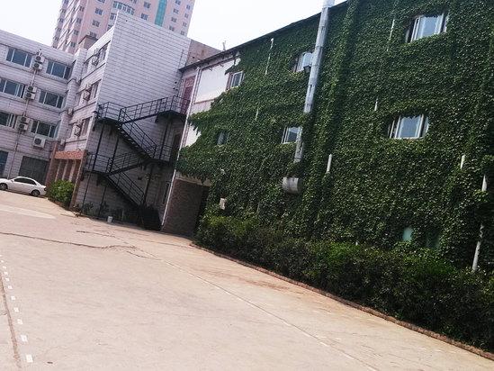 綠色停車場