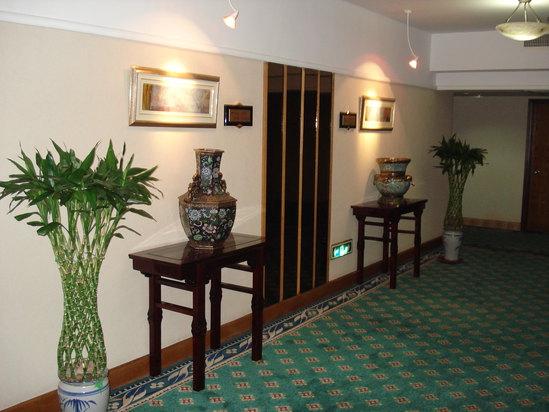 行政樓層走廊