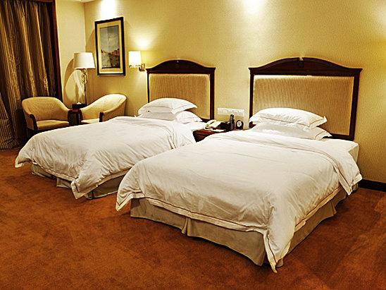 行政双床房