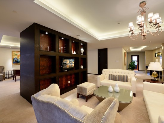 Executive VIP Room